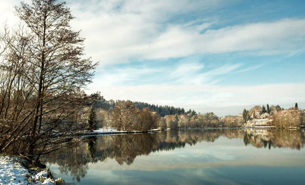 Ein von Bäumen umgebener See in einer Winterlandschaft bei herlichem Wetter.